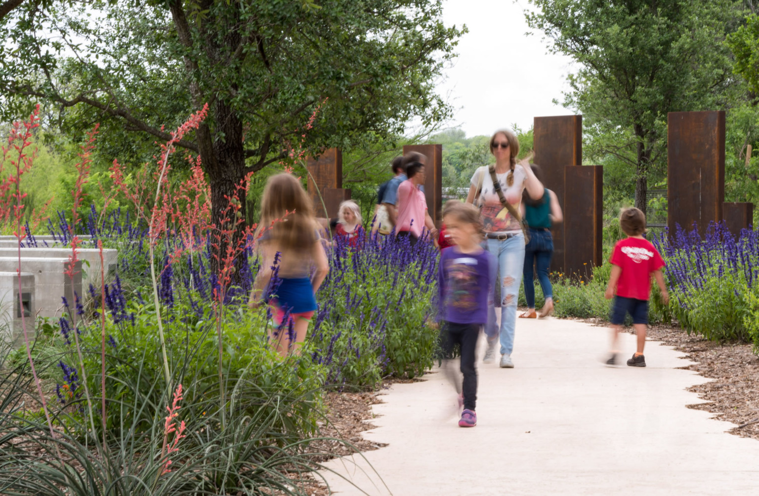 The Exemplary Native Plant Landscaping Of Confluence Park By Donald Ewers San Antonio Chapter