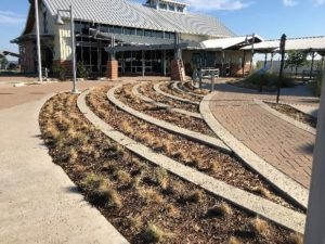 i-35-rest-areas-monarch-waystations-project-call-for-volunteers_page_1_image_0002